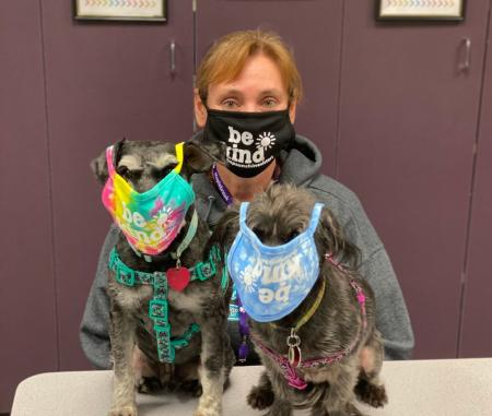 Therapy Dogs at Maplebrook Elementary